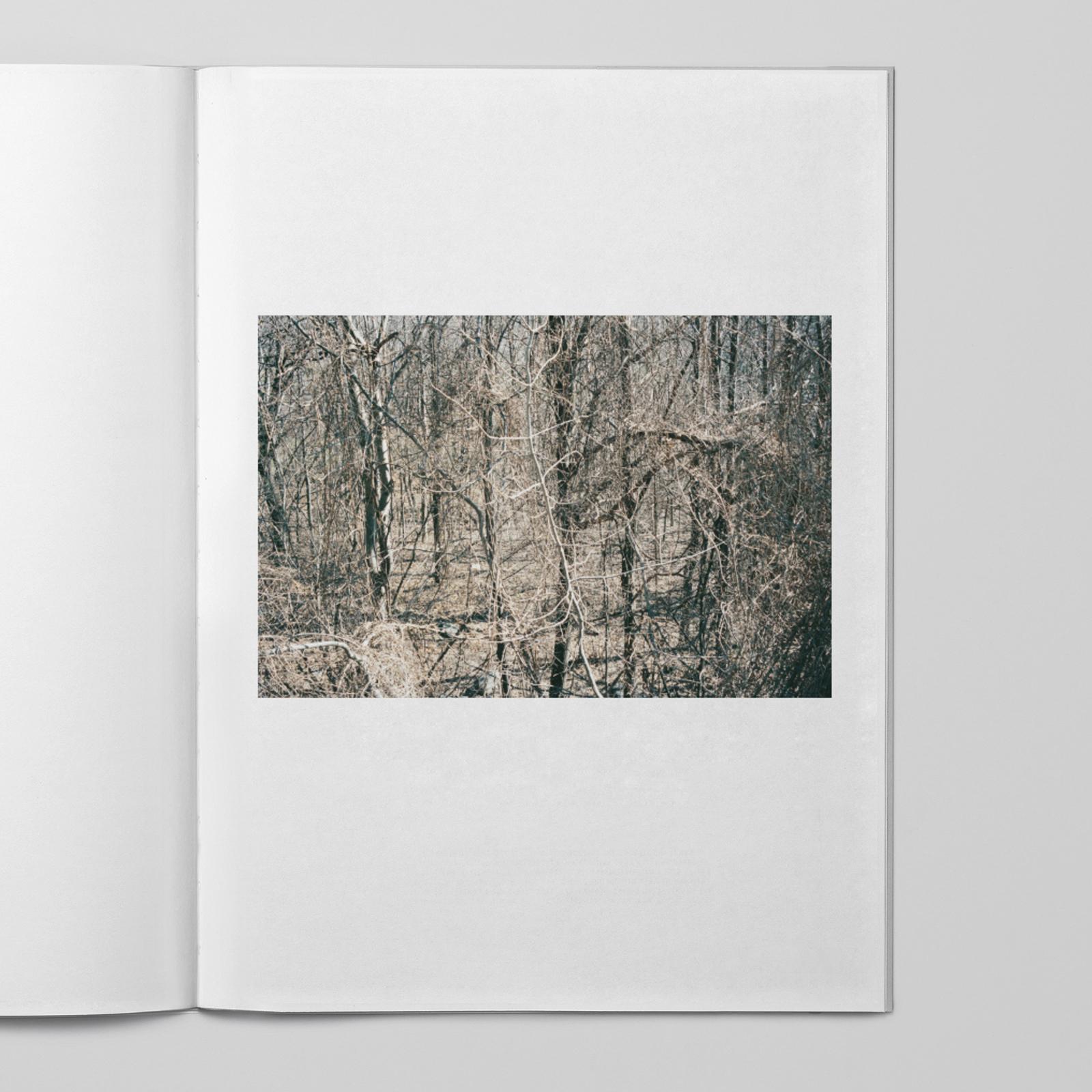 Johan Sandberg — D-Aosta_0014_Lager 13