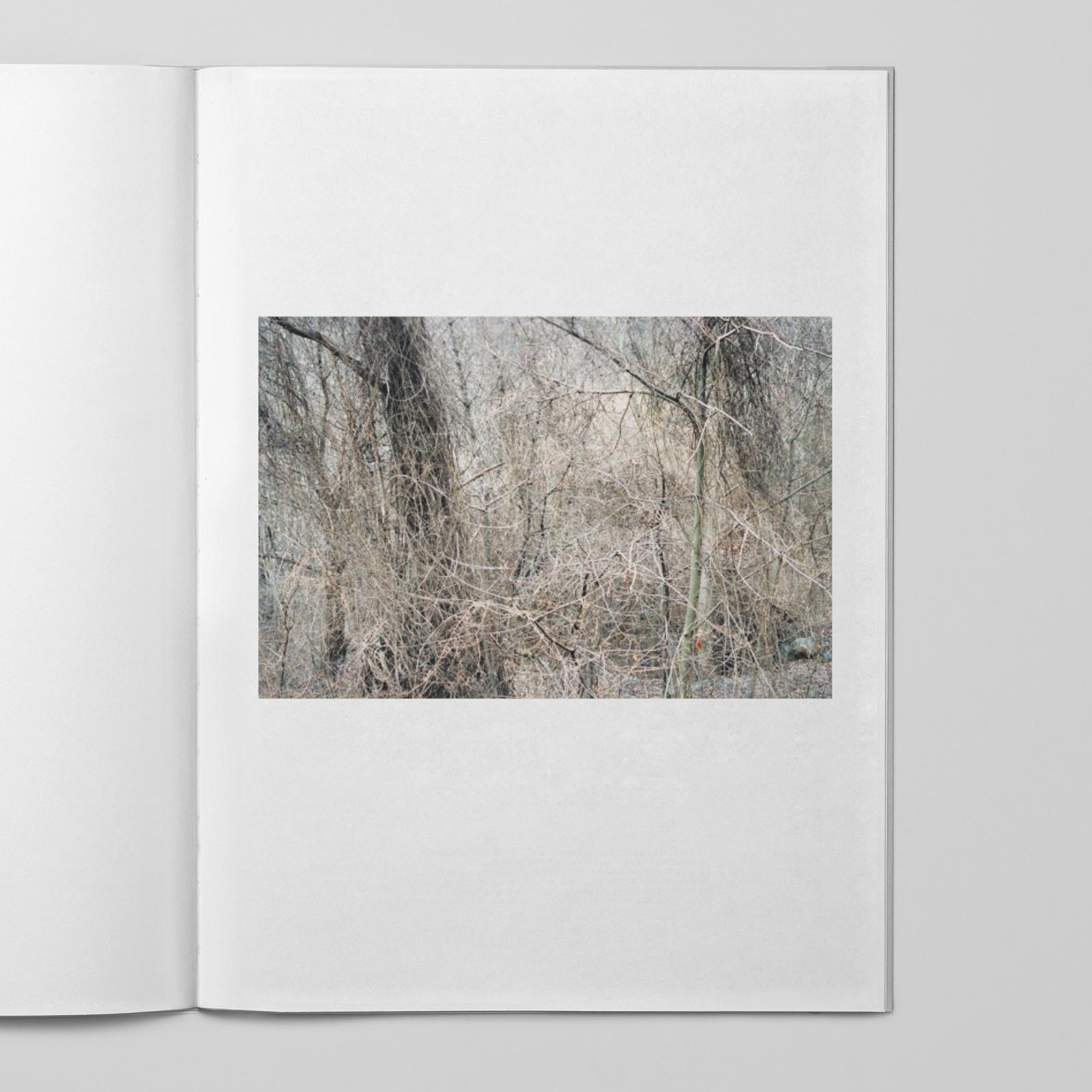 Johan Sandberg — D-Aosta_0014_Lager 4