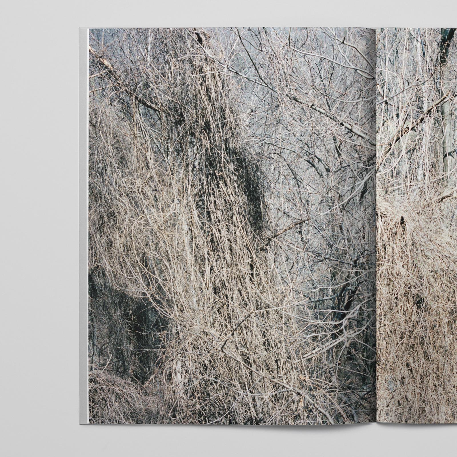 Johan Sandberg — D-Aosta_0014_Lager 7